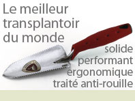 transplantoir schwan