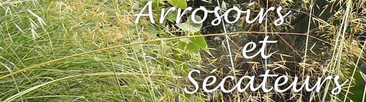 blog arrosoir et sécateur