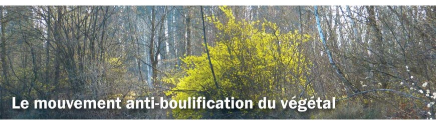 Le mouvement anti boulification du vegetal