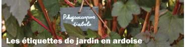 Les etiquettes en ardoise pour le jardin
